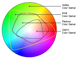 Visible Color Spectrum With Print Gamut